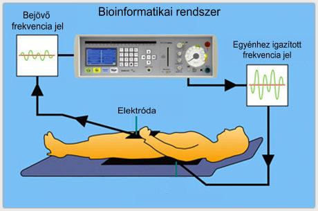 dohanyzas_bioinformatika