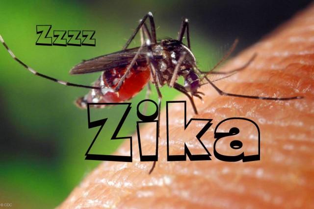 zika-virus_2.